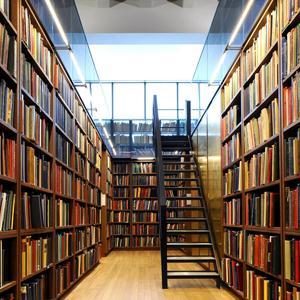 Библиотеки Шуи