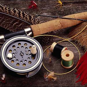 Охотничьи и рыболовные магазины Шуи